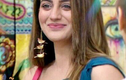 'Shamita-Raqesh's showmance is FAKE'
