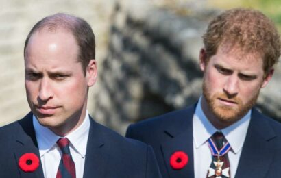"""Turns Out Prince Harry and Prince William Still """"Aren't Talking That Much"""""""
