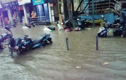Bengaluru: NGOs, firms rejuvenating lakes without proper nod, say environmentalists
