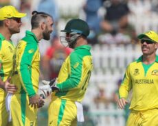 Emotional rollercoaster: Stoinis brings back smiles on Aussie faces, Markram's remarkable catch and Maxwell's hairdo