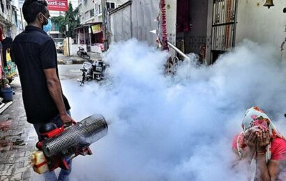 Panchkula: 100+ dengue cases in 10 days, beds full in pvt hospitals