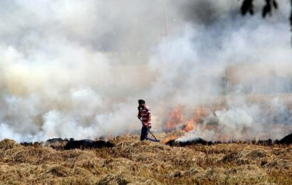 Paying farmers to not burn crops will work
