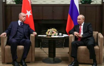 Putin, Erdogan sit down for talks on war-torn Syria