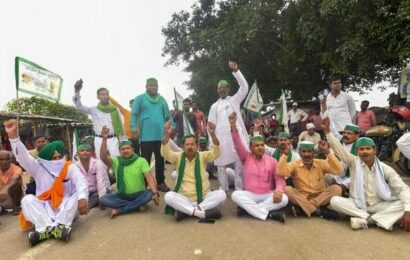 SC asks govt to ensure farmers' bodies made parties in case